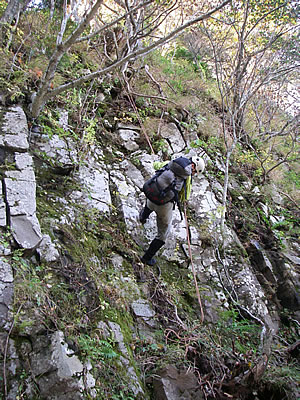 hitokoma2009-1022-3.jpg