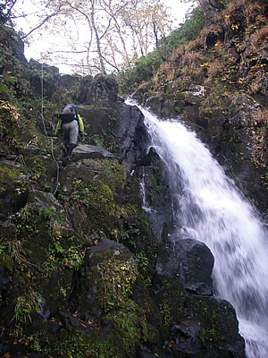 hitokoma2009-1022-4.jpg