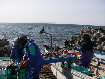 hitokoma2009-511-1.jpg