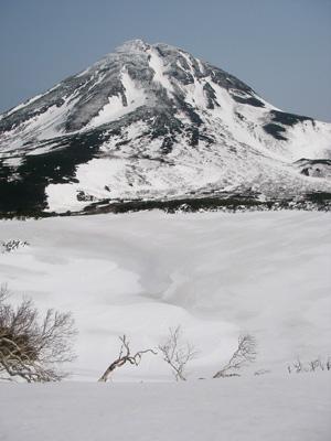 hitokoma2009-516-1.jpg