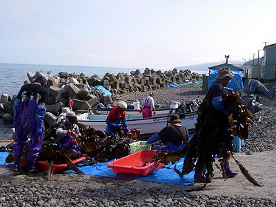 hitokoma2009-86-2.jpg