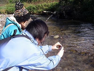 hitokoma2009-929-2.jpg