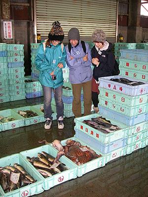 hitokoma2009-929-3.jpg