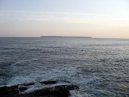 hitokoma2011-1118-2.jpg