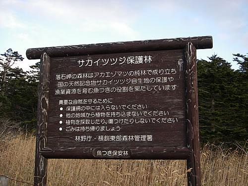 hitokoma2011-1118-4.jpg