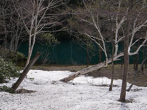 hitokoma2011-527-5.jpg