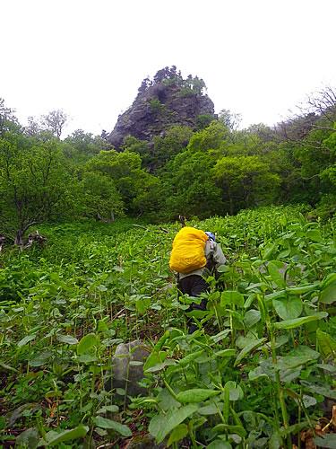 hitokoma2011-616-3.jpg