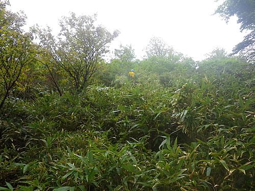 hitokoma2011-616-5.jpg
