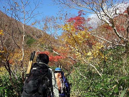 hitokoma2012-1019-1.jpg