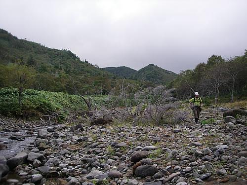 hitokoma2012-103-4.jpg
