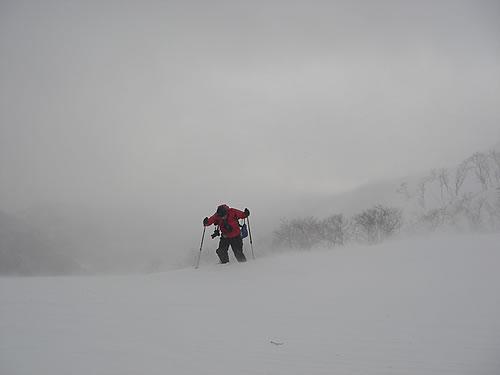 hitokoma2012-210-1.jpg