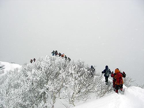 hitokoma2012-325-5.jpg