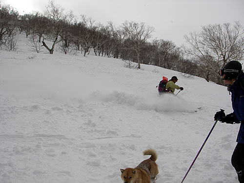 hitokoma2012-325-6.jpg