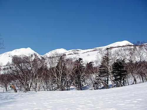 hitokoma2012-415-1.jpg