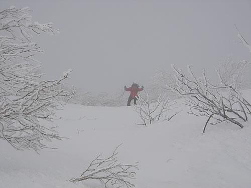 hitokoma2012-48-3.jpg
