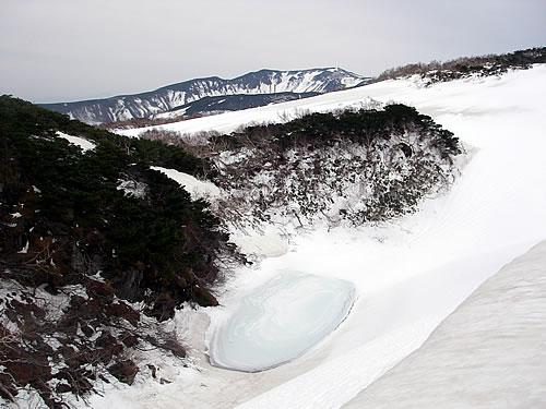hitokoma2012-515-1.jpg