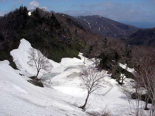 hitokoma2012-518-1.jpg