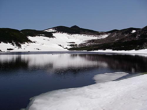 hitokoma2012-521-2.jpg