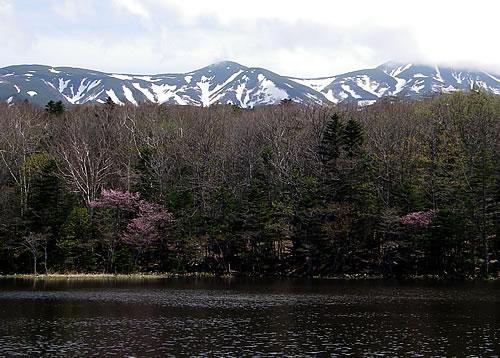hitokoma2012-57-1.jpg