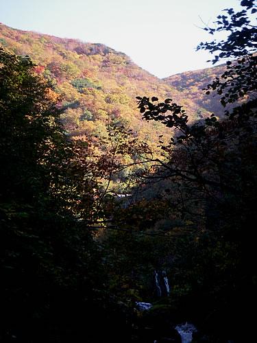 hitokoma2013-1011-3.jpg