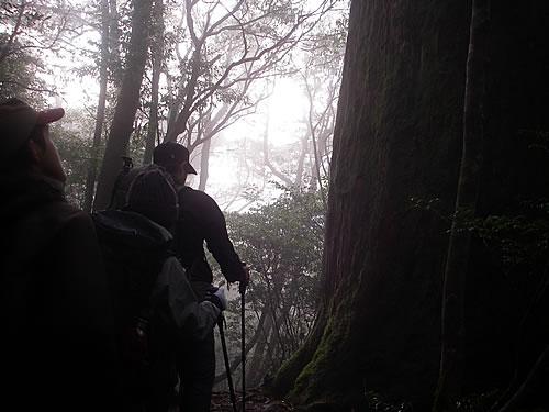 hitokoma2013-1125-7.jpg