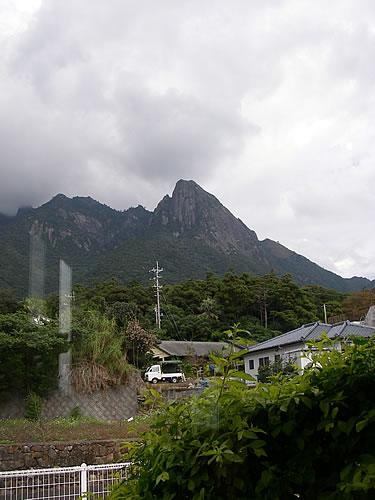 hitokoma2013-1126-5.jpg