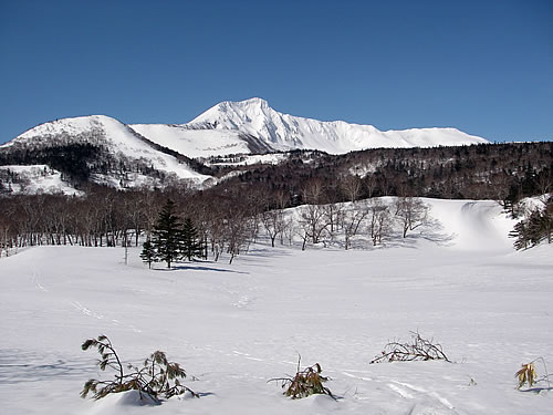 hitokoma2013-315-1.jpg