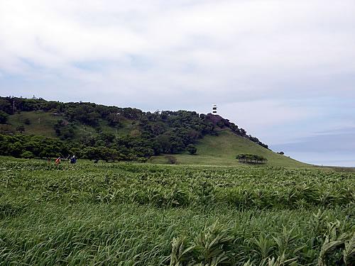 hitokoma2013-627-6.jpg