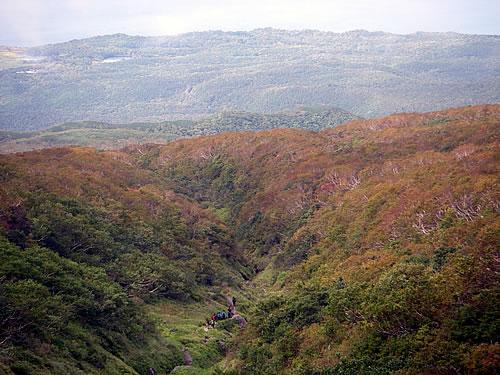 hitokoma2013-929-1.jpg