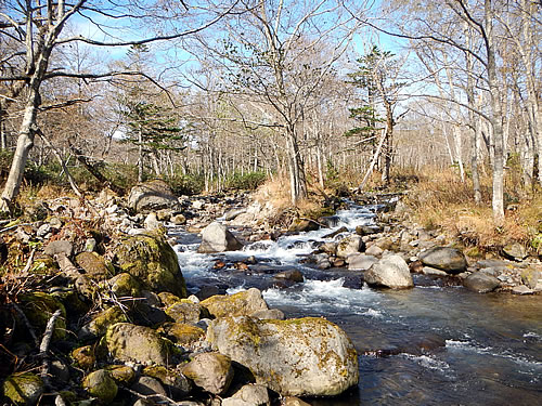 hitokoma2014-1025-1.jpg