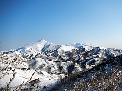 hitokoma2014-412-4.jpg