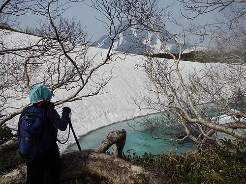 hitokoma2014-515-6.jpg