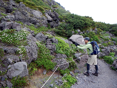 hitokoma2014-83-6.jpg