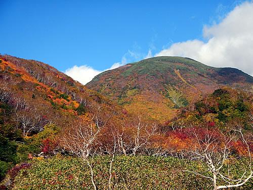 hitokoma2014-930-1.jpg
