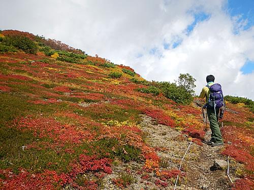 hitokoma2014-930-3.jpg